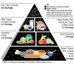 1990s Food Pyramid