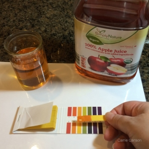 apple juice pH test