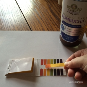 kombucha pH test