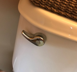 Toilet handle picture